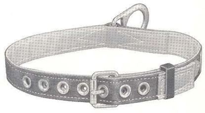 Picture of 5441L Safety Belt Lined 1D-L