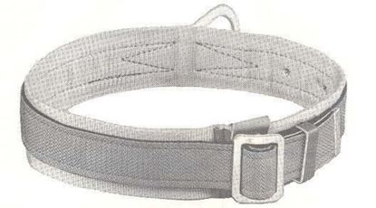 Picture of 5447-1D Safety Belt Padded 1D-M